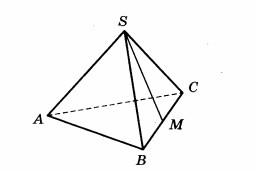 В правильной треугольной пирамиде